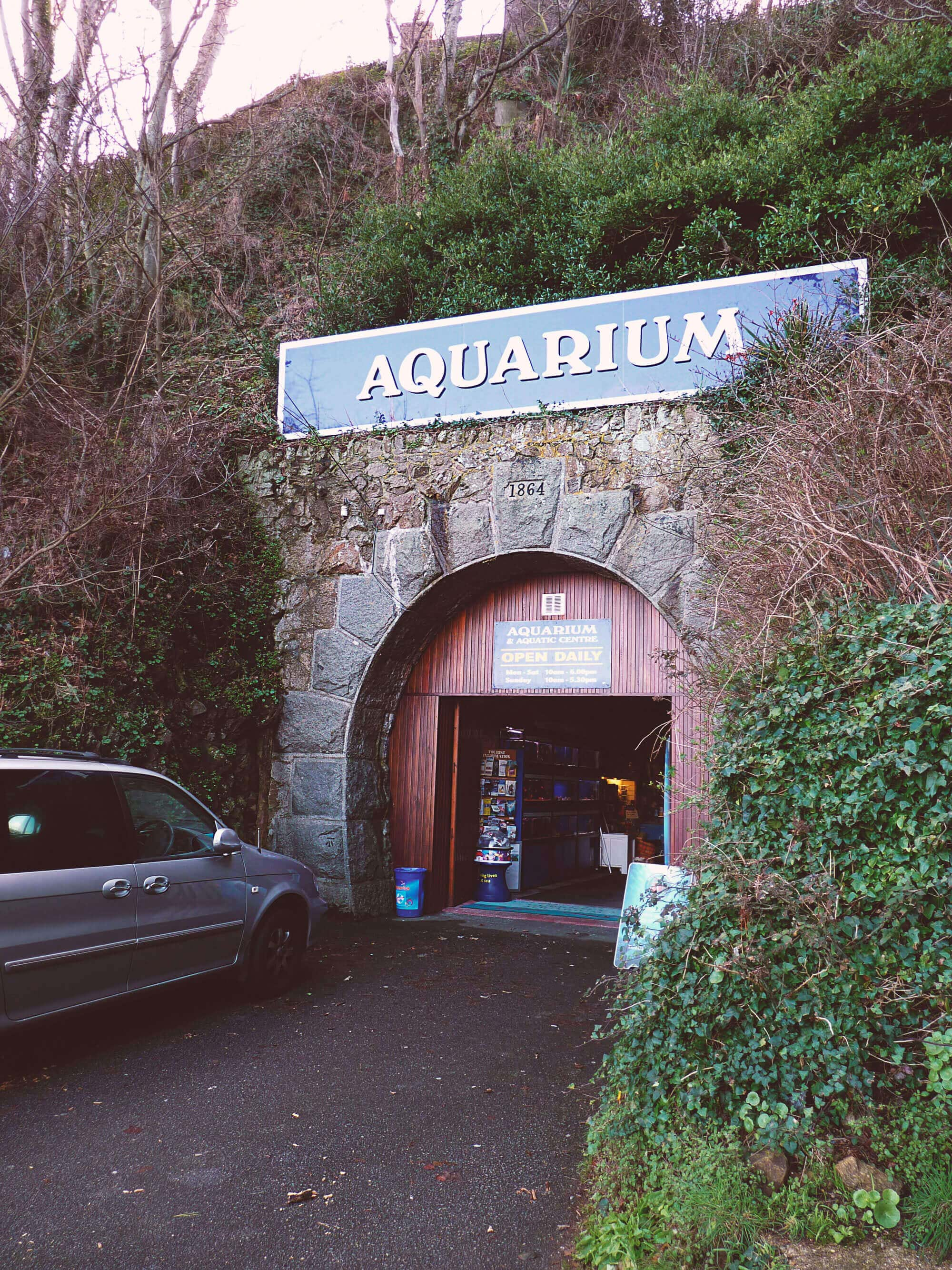 guernsey aquarium channel islands underground