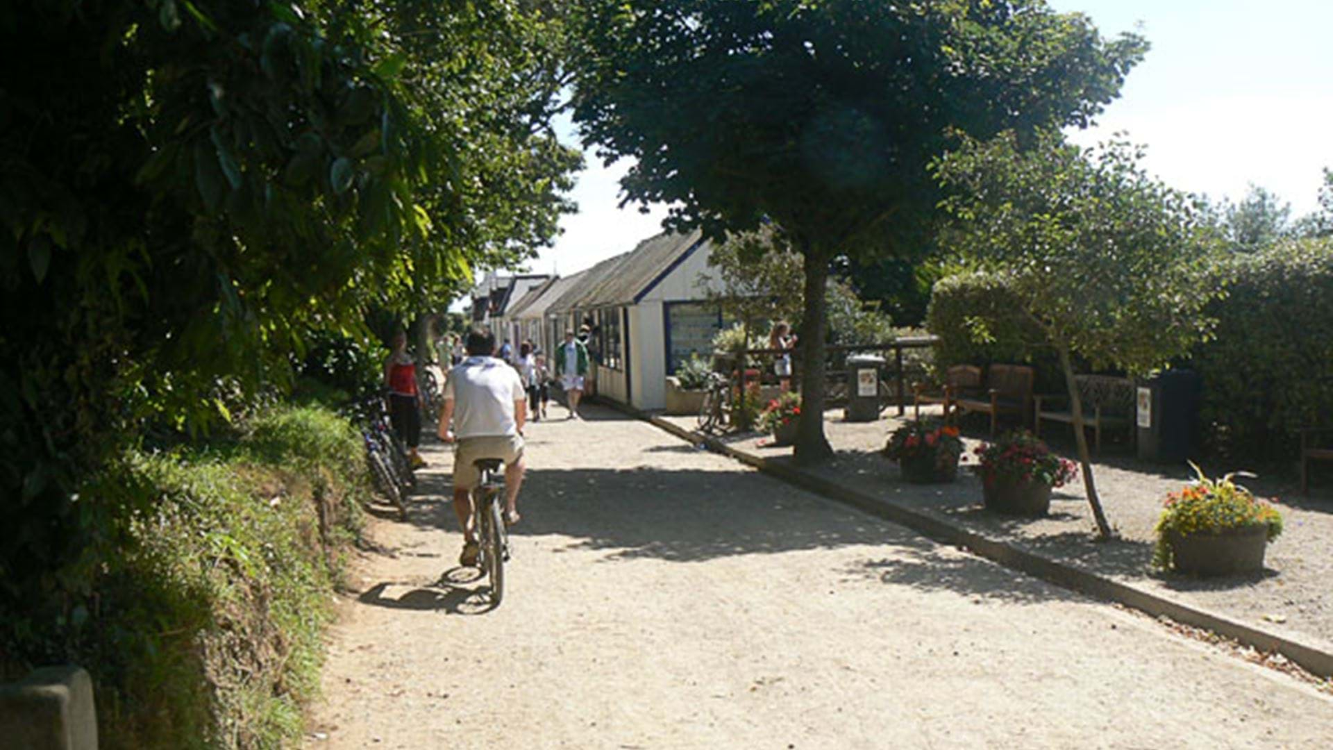 the-avenue-cycle-sark-guernsey-channel-islands